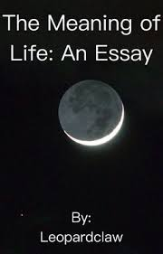 Essay On The Meaning Of Life The Meaning Of Life An Essay Leopardclaw Wattpad