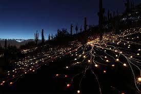 fantastic lighting. field of light fantastic lighting s