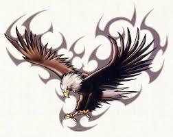 Tetování Orla Symbol Svobody A Odvahy