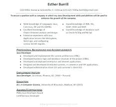 Java Web Sphere Developer Resume Interesting Sample Cover Letter For Resume Software Developer With Java
