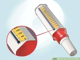 Peak Flow Reading Chart How To Use A Peak Flow Meter 13 Steps With Pictures Wikihow