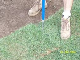 Diy Sod J Drake Turf Farm How To Install Sod Diy