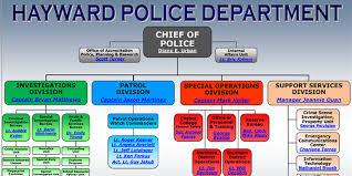 Hpd Org Chart About Hpd City Of Hayward Official Website