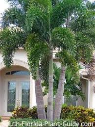 Small Picture Landscape Design South Florida Landscape Design Architect