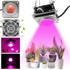 Cob Light Grow Details About 300w Led Grow Light Cob Lamp With Cooling Fan For Bloom Veg Indoor Plants Flower