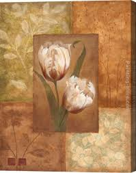 vivian flasch tulip i stretched canvas painting