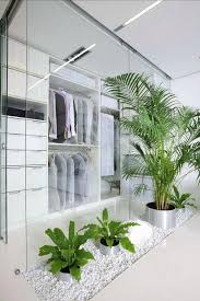 modern office plants. Modern House Plants Walk In Closet Interior With Indoor Design Also Clear Glass Wall Plus . Office
