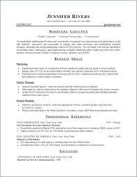 Curriculum Vitae Format Resume Example