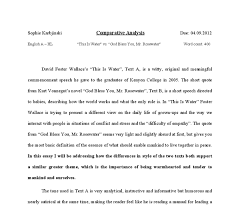 comparative analysis essays how to write a comparative analysis essay outline