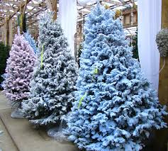 Christmas Tree Flocking - Port Kells Nurseries