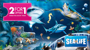 real underwater train. 2 For 1 Offers At Sea Life: London Aquarium When You Go By Train Real Underwater