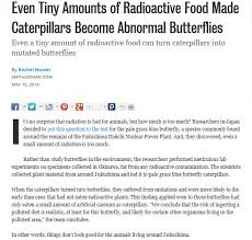 Small Picture Even Tiny Amounts of Radioactive Food Made Caterpillars Become