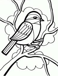 600x781 drawing a little cute bird coloring page color luna