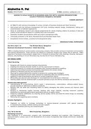 System Analyst Sample Resume Stunning Business System Analyst Resume Gulijobs