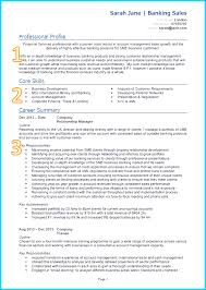 good cv template create professional cv templates uk example of a good cv