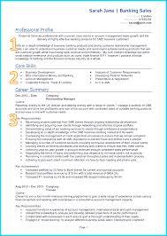 good cv template create professional cv templates uk example of a good cv