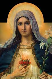 sons and daughters of mary s immaculate heart