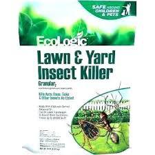 diatomaceous earth fleas yard in the best flea spray diatomaceous earth fleas yard