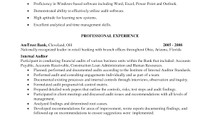 Auditor Resume Creating A Good Resume Finance Officer Sample Resume