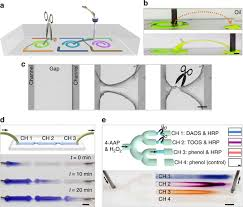 Harnessing <b>liquid</b>-in-<b>liquid</b> printing and micropatterned substrates to ...