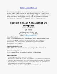 The History Of Professional Accountant Resume