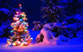 Christmas - Snowy Christmas Tree Lights ...