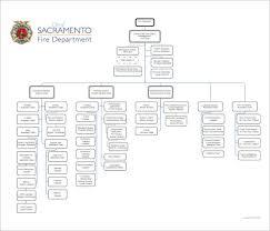 49 Clean Department Organizational Chart Template