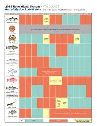 Florida Fishing Seasons Chart Gulf Seasons Vengeance Charters