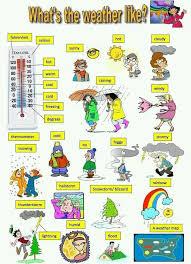 204 best Inglés images on Pinterest | English grammar, Languages ...