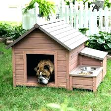 igloo dog house small plan beautiful easy plans large dogs for insulated