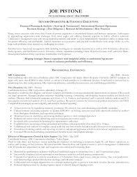 Senior Resume Template Free Senior Executive Cv Template Templates At