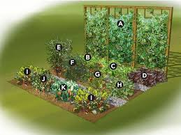 Small Picture Gorgeous Flower And Vegetable Garden Layout How To Design A