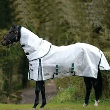 Weatherbeeta Horse Blankets Golegilo Club
