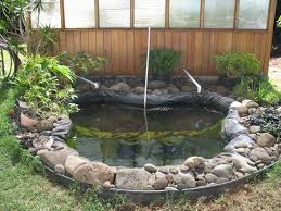 Backyard Aquaponics Forum | Outdoor Furniture Design And Ideas