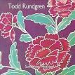 Something/Anything? album by Todd Rundgren