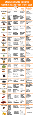 Spices Chart For Food Spice Combinations Chart To Reuse Left Over Spices Spiceitupp