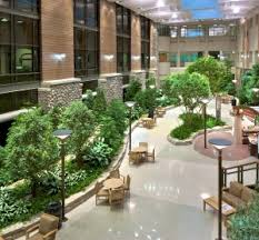 office landscaping ideas. Interior Landscaping Office Ideas A
