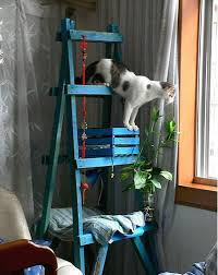 diy cat tree made out of a ladder a crate and a piece of wood