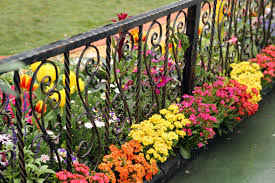 an ornate black wrought iron fence with a wooden base low brightly colored flowers