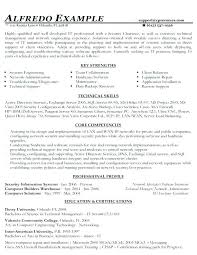 Combination Resume Sample Awesome Combination Functional And Chronological Resumes Bino48terrainsco