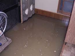 床下 浸水 したら