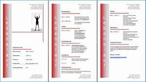 Lebenslauf In Word Erstellen Professioneller Lebenslauf