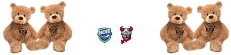 Professional Hockey Binghamton Ny Binghamton Devils