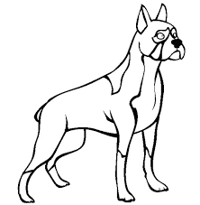 Printable Boxer Dog Coloring Pages Dog Picture For Coloring Dogs