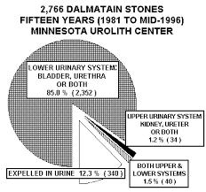 Dalmatian Club Of America 15 Years Data Of Almost 3000