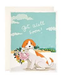 Get Well Card Joojoo Paper Get Well Soon Dog Flowers Greeting Card