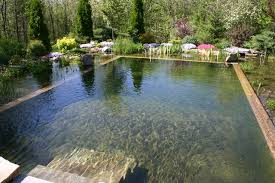 natural looking in ground pools. Photo Courtesy Of Houzz.com Natural Looking In Ground Pools