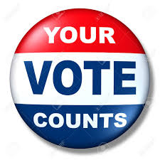 Image result for vote sign pics