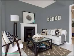 Light Gray Wall Paint Living Room The Best 5 Blue Gray Paint Colors Gray Interior Design Ideas
