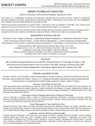 example project manager resume 21 technical project manager resume 70 it  manager resume sample resume -